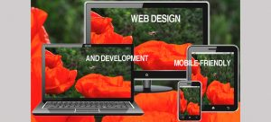 Responsive and Dynamic Website Design